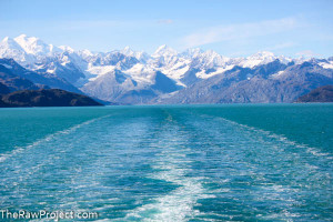 Vegan Alaskan Cruise Part 3 – Silent Sunday