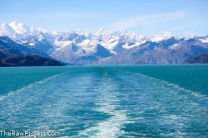 Vegan Alaskan Cruise Part 3 – Silent Sunday